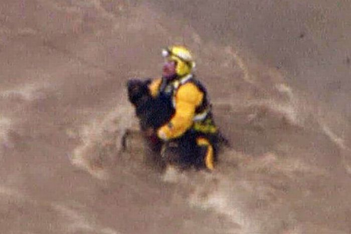 A Dog is Being Rescued by Helicopter (15 pics)
