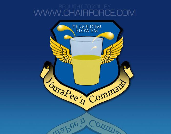 Funny Command Shields (12 pics)