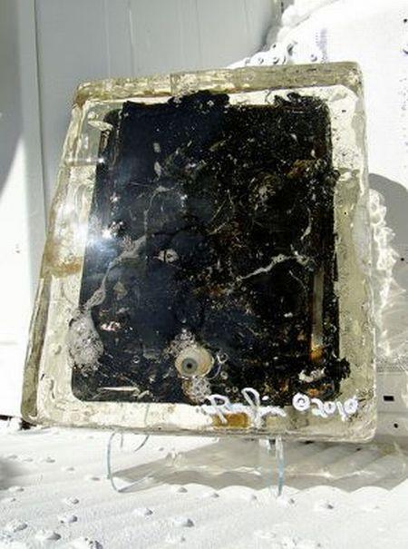 Microwaved iPad (14 pics)