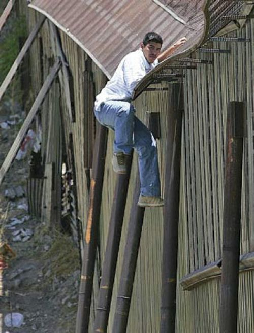 The Most Unusual Ways to Cross the Border (49 pics)