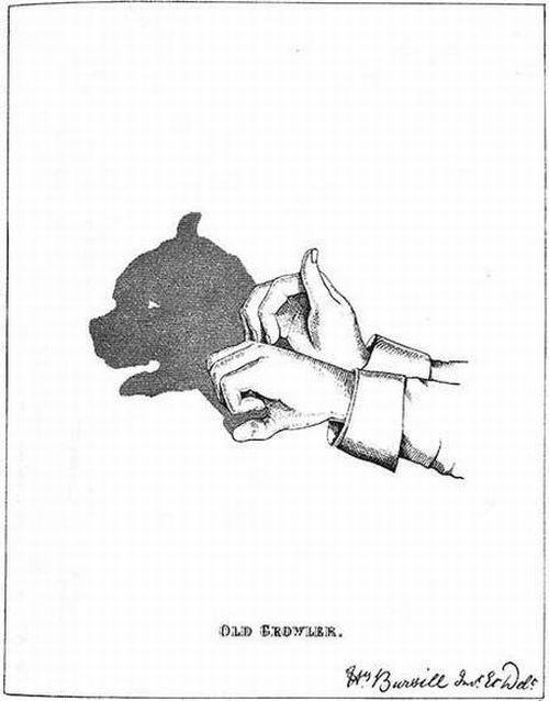 Amazing Shadow Art (18 pics)