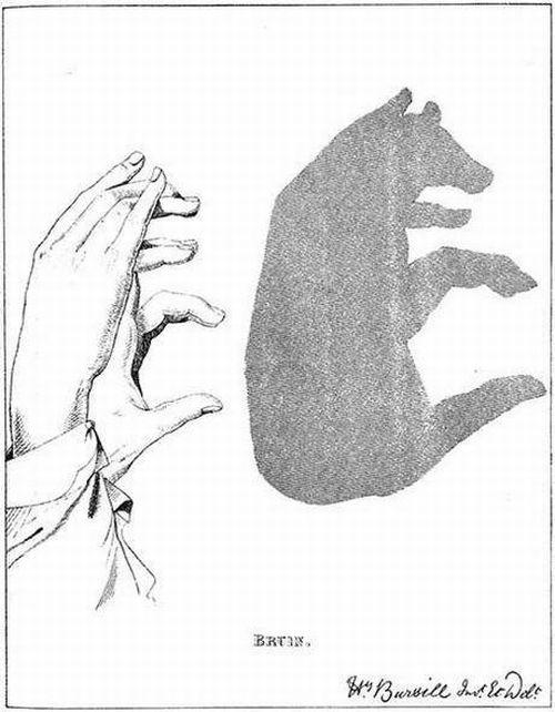 amazing shadow art 07 - Amazing Shadow Art