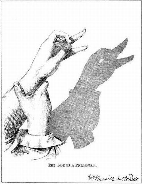 amazing shadow art 12 - Amazing Shadow Art