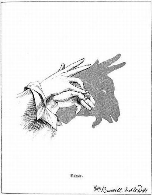 amazing shadow art 18 - Amazing Shadow Art