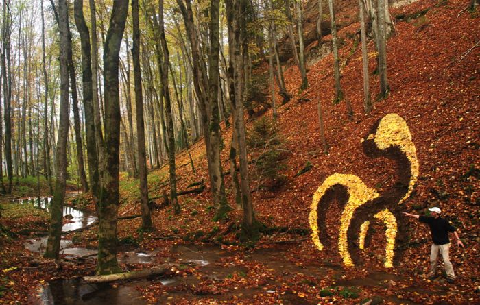 Amazing Land Art (14 pics)