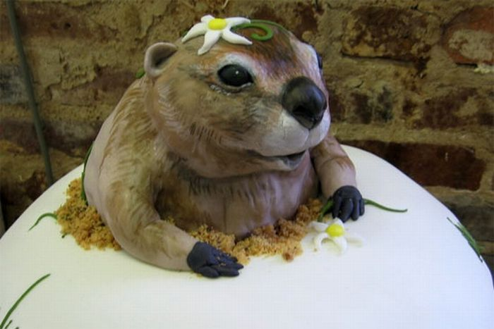 Great Cakes (16 pics)