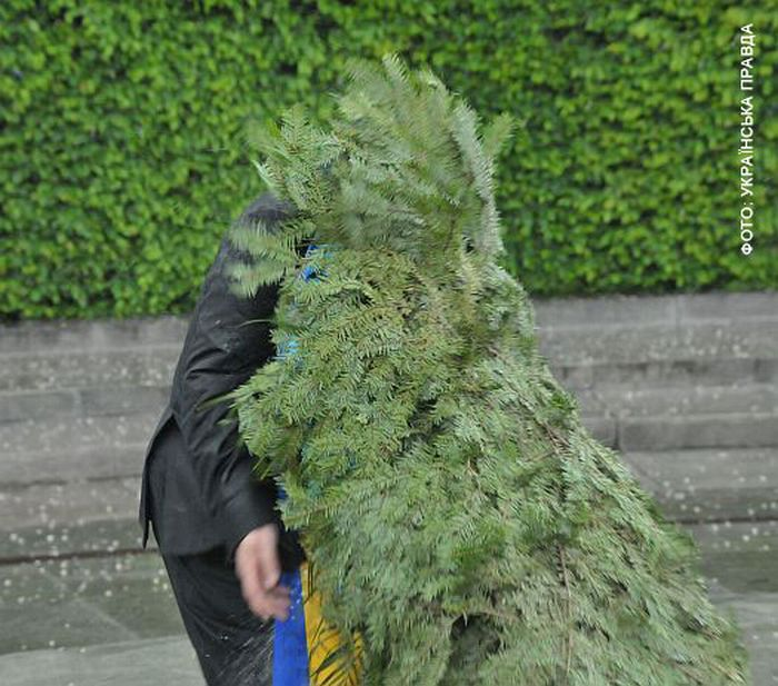 Wreath Laying Ceremony Gone Wrong (8 pics + video)