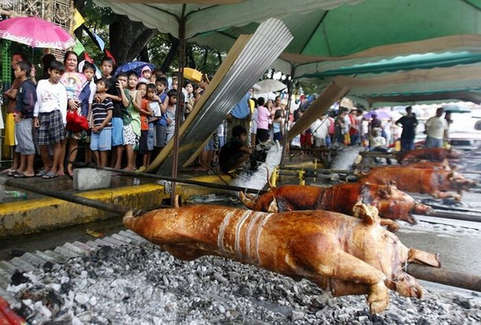 The Parade of the Lechon (18 pics)