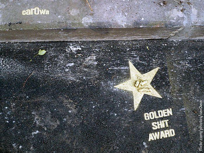 Golden Shit Award (8 pics)