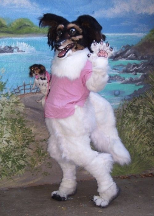 The Worst Fursuit Ever (4 pics)