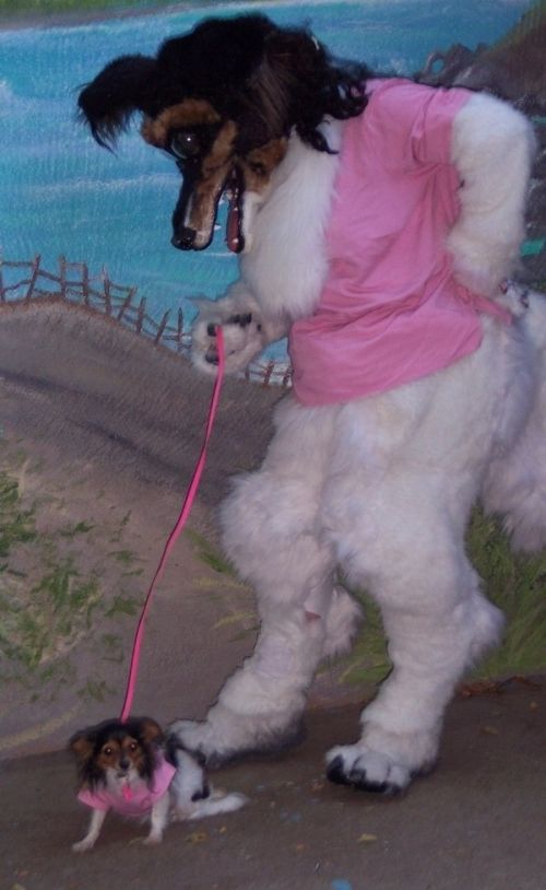 The Worst Fursuit Ever (4 Pics