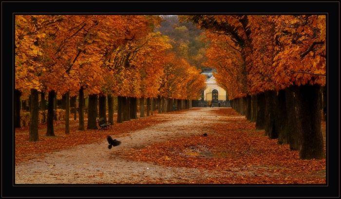 Stunning Landscapes (40 pics)