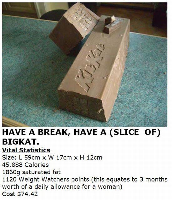How to Make a BigKat (7 pics)