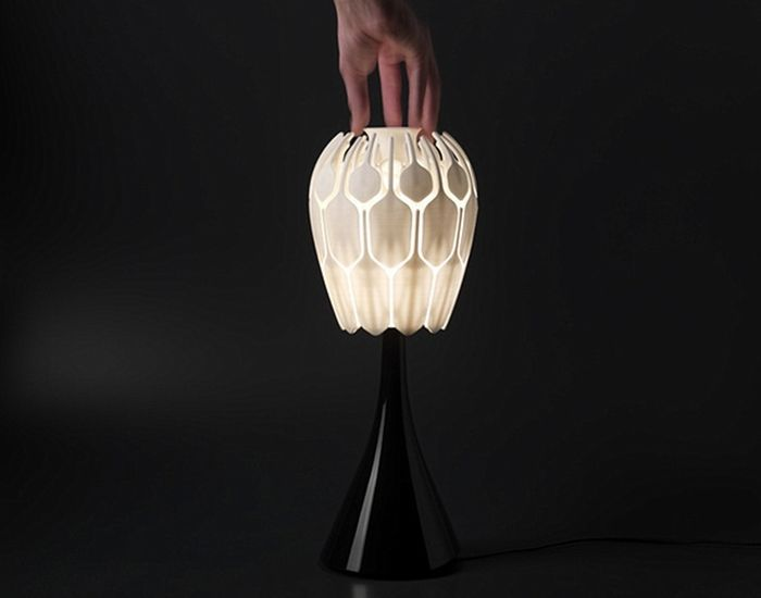 Interesting Concept of a Lamp (8 pics)