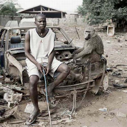 African  Pets (33 pics)