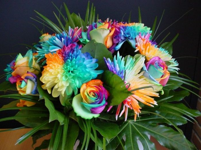 Colorful Flowers (20 pics)