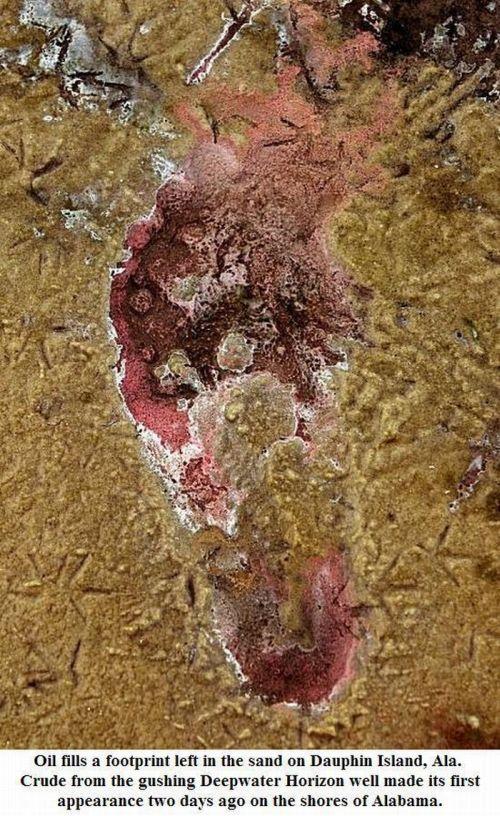 Acid Picdump (165 pics)