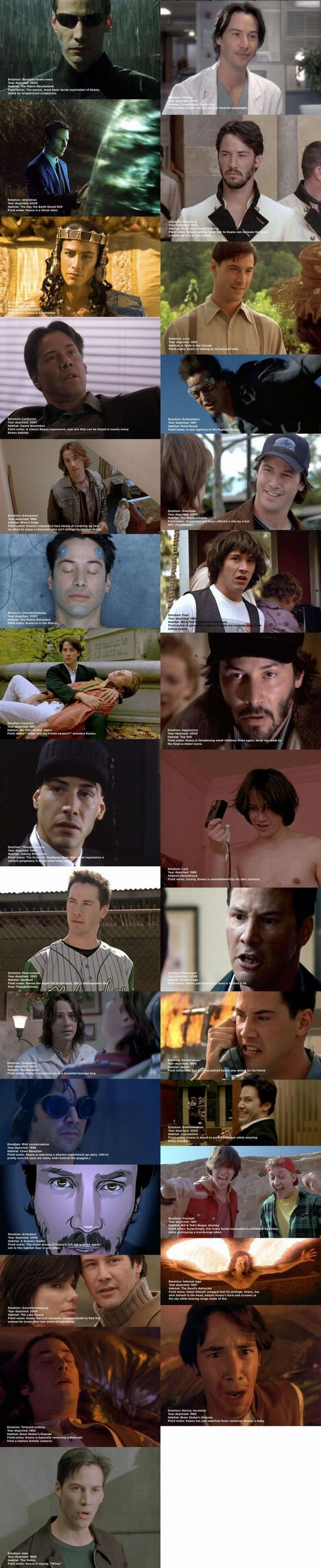 Sad Keanu Reeves is Being Photoshopped (42 pics)