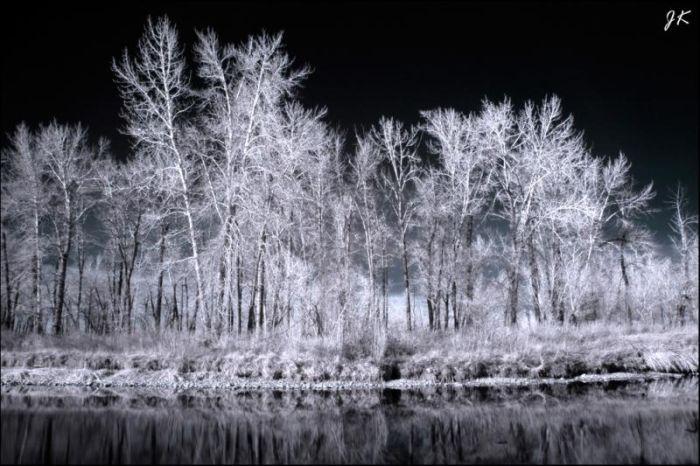 Breathtaking Infrared Photos (32 pics)