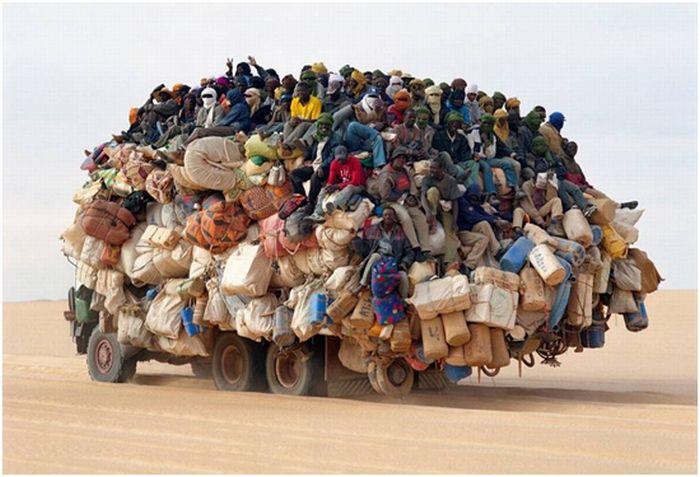 Hilarious Ways of Transportation (43 pics)