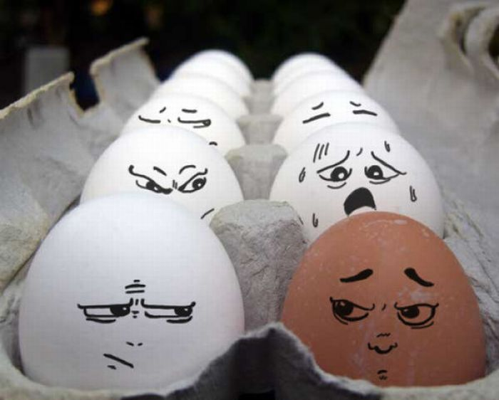The Secret Life Of Eggs. Part II (64 pics)