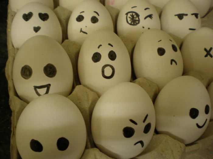 The Secret Life Of Eggs. Part II (64 pics)