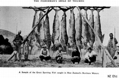 Enormous Fish (31 pics)