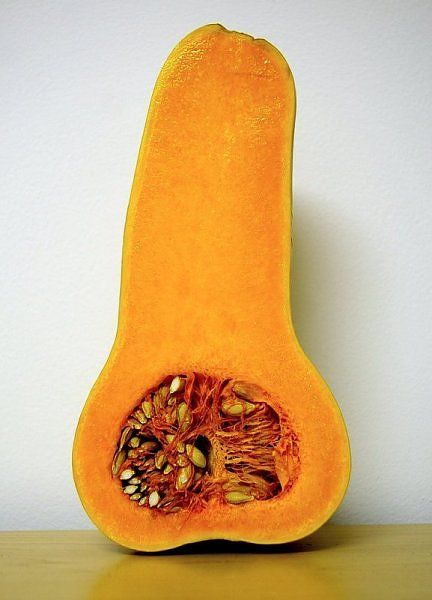 Accidental Penis (69 pics)