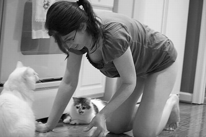 Even Pets Love Cleavage (16 pics)