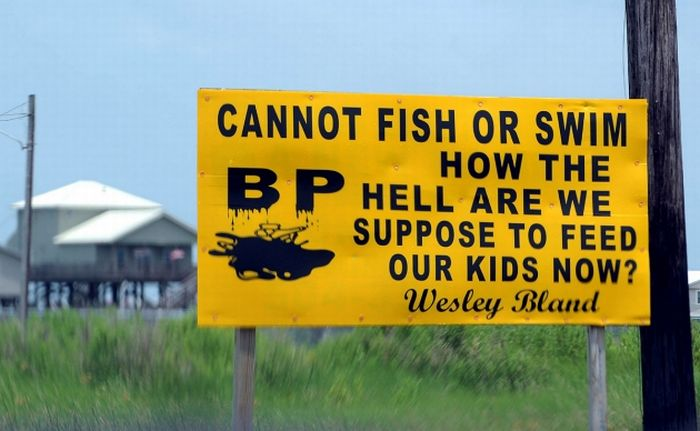 Road Signs of Rage (16 pics)