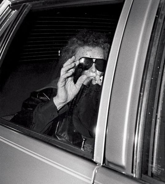 Photography with the Paparazzi Approach (62 pics)