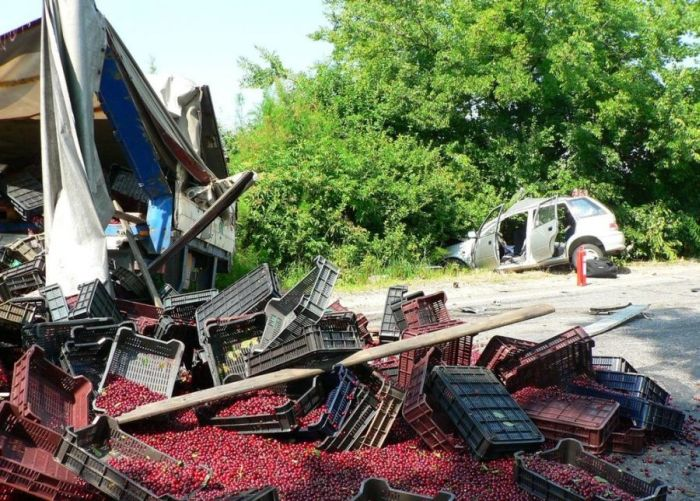 Truck Full of Cherries Accident (12 pics)