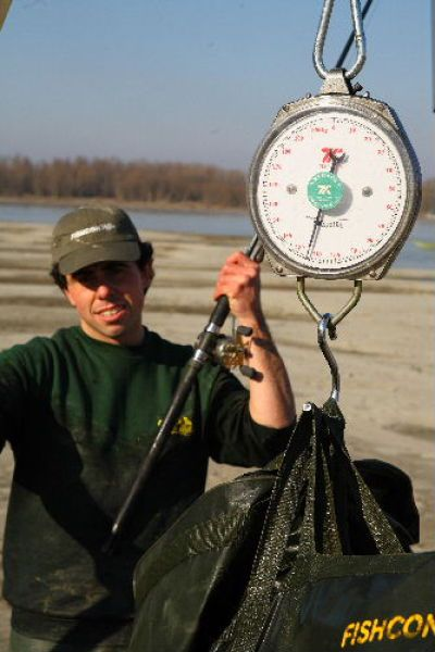 What a Catch. A Giant Catfish (9 pics)