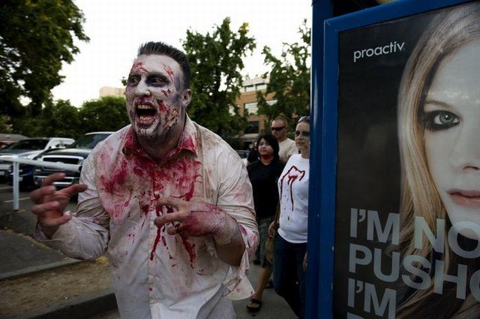 Sacramento Zombie Walk (16 pics)