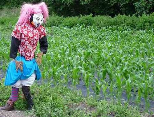The Ugliest Scarecrows (9 pics)