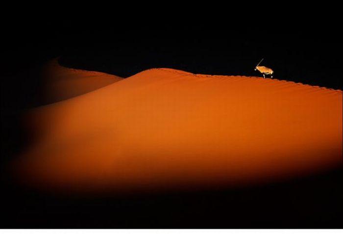 Stunning Photographs of Nature (83 pics)