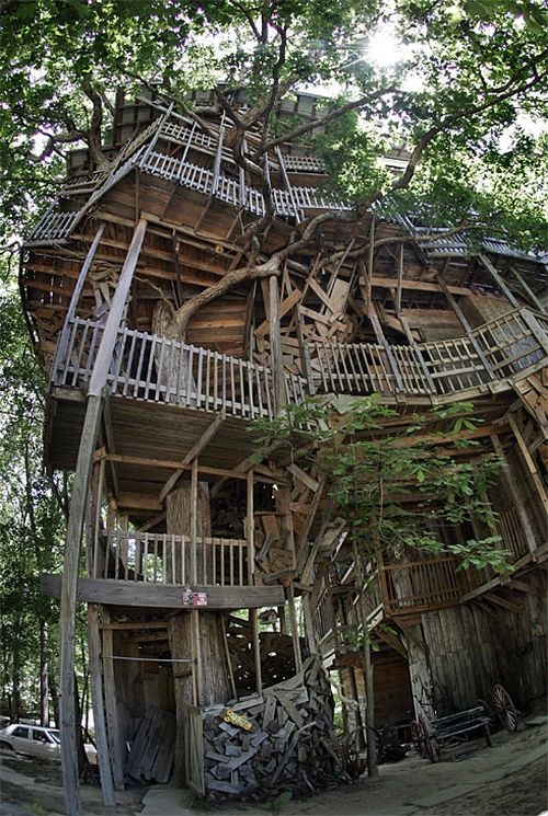 Biggest Treehouse In The World 2013 largest tree house in the world - eface.in