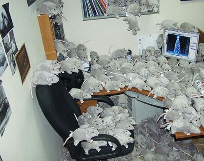 Awesome Office Cube Pranks (21 pics)