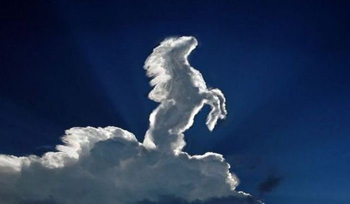 Cloud Formations in the Form of Horses (17 pics)