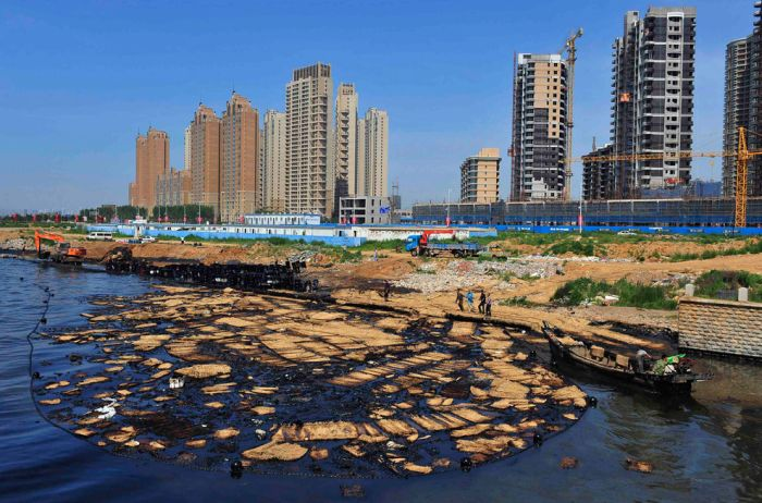 Cleaning Dalian Harbor (38 pics)