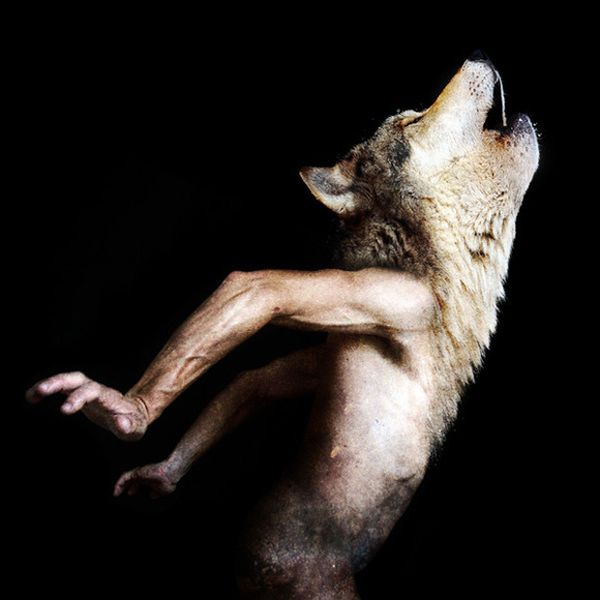 Scary Creatures of Francesco Sambo (8 pics)
