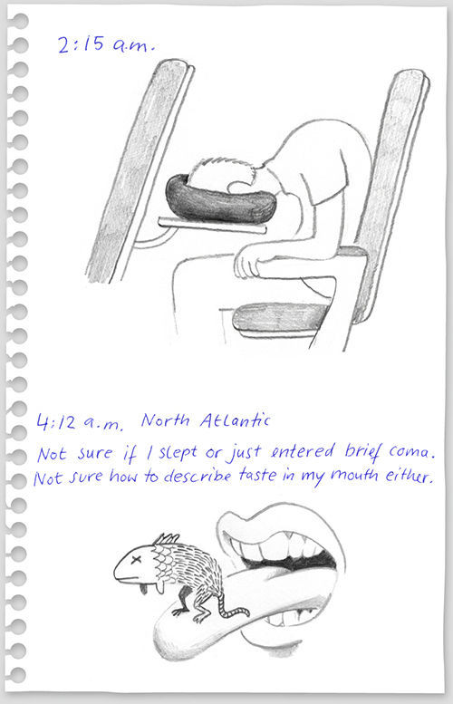 Funny Drawings from the Flight from New York to Berlin (14 pics)