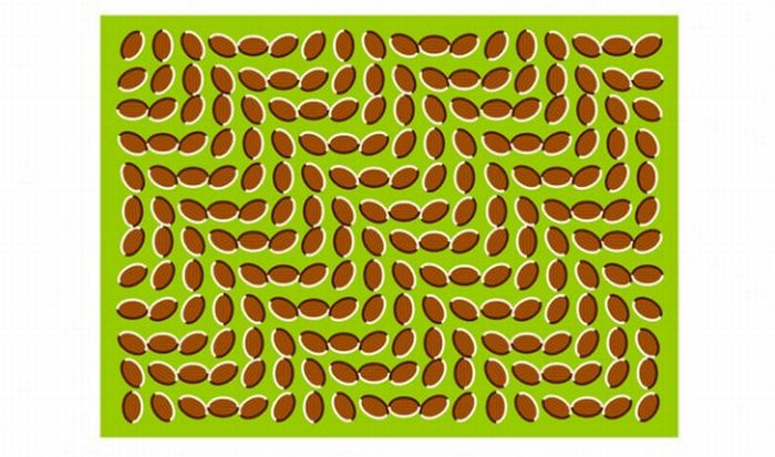 Great Optical Illusions (40 pics)