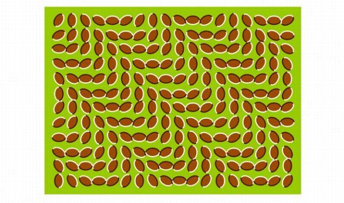 Great Optical Illusions (40 pics)