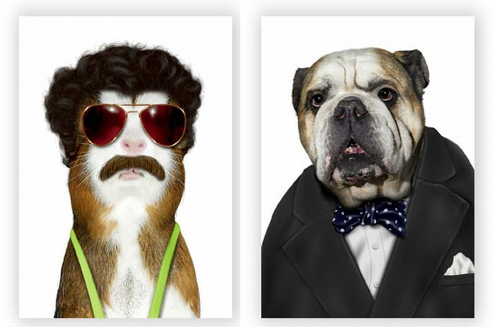 Pets as Famous People (9 pics)