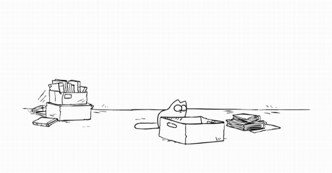 Simon's Cat in 'The Box'