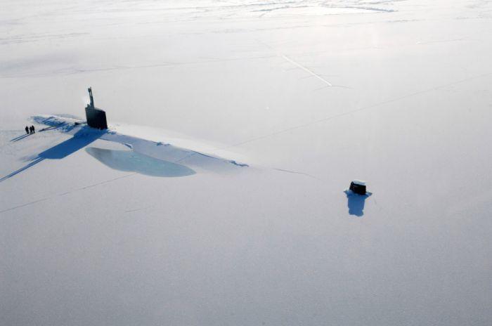 This is Arctic (25 pics)