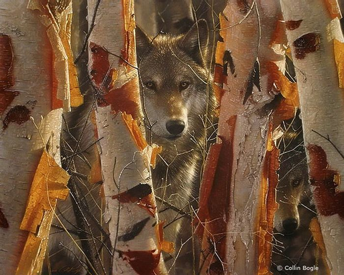 Wolf Beautiful_wildlife_paintings_07