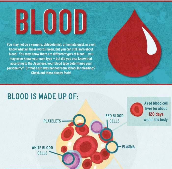 Facts About Blood (infographic)