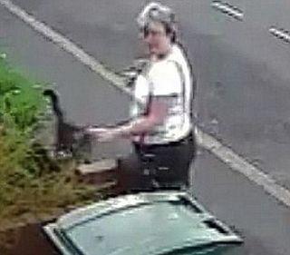 Woman Who Dumped Cat in Bin (6 pics + video)